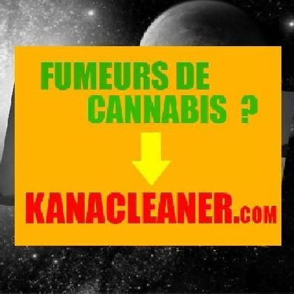 Tuto faire pousser du cannabis sans lampe l 39 usage du for Plantation cannabis interieur sans materiel